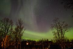 KilpisAurora-3951 (Jørgen AM) Tags: northernlights aurora borealis nordlys