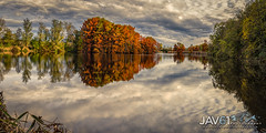 Fall landscape, with the bright colors of Cypress trees-9270 (George Vittman) Tags: landscape nature fall panorama nikonpassion naturephotography jav61photography jav61 colors fallcolors