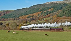 late autumn (midcheshireman) Tags: steam train wales locomotive landscape walles autumn llangollen llangollenrailway greatwestern 64xx