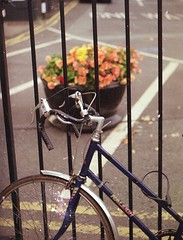 old school.. (gabor7676) Tags: exa drogheda color filmphotography cycle flowers street photography analogphotography relaigh