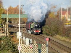 "61306 ""Mayflower"" on 5Z22 1101 York N.R.M to Southall WCR (robertbester66) Tags: spaldingrailwaystation railways lner thompson b1 61306 mayflower 460 steam"