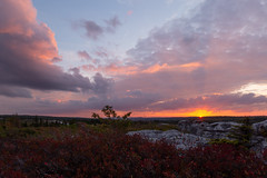 Dolly Sods Sunset (Ken Krach Photography) Tags: westvirginia
