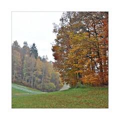 Novembersonntag (Uli He - Fotofee) Tags: ulrike ulrikehe uli ulihe ulrikehergert hergert nikon nikond90 fotofee