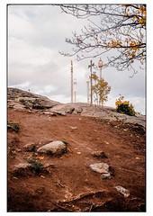 (schlomo jawotnik) Tags: 2019 oktober stockholm schweden kastellholmen vergnügungspark fels steine erde blätter laub gelb kreuz gleichaberanders wurzeln farbe film analog kodak kodakproimage100 usw
