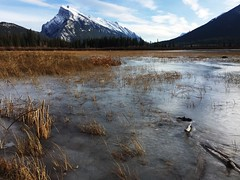 Vermilion Lakes Autumn (Mr. Happy Face - Peace :)) Tags: sky clouds banff alberta canada cans2s nature hiking autumn snowcaps cold weather art2019 rockies mountains national park nwn international vermillion