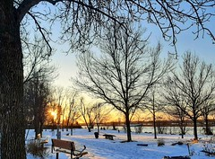Wintry sunset in the park (angelinas) Tags: wintry snow hiver cold goldenhour sundown sunset trees atmosphere moody sunlight soleil arbres landscapes landscapelover samsunggalaxy mobilephotography nofilter riverscape paysages paesaggio arbeli white atardecer tramonti mood evening montrealquebec canada northamerica