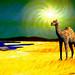 Woe in the Desert