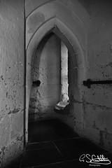 Warwick Castle, Warwick 13/07/2019 (Gary S. Crutchley) Tags: william the conqueror 1 i first warwick castle warwickshire fortress medieval uk great britain england united kingdom nikon d800 history heritage travel raw black white and bw mono monochrome