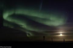 Aurora moon (nordanheidar) Tags: iceland icelandphotography nature naturephotography naturewonder sky auroraborealis aurora norhernlights night nightphotography moon sony sonyalpha sonya6000 sonyphoto sigmalens sigmaphoto winter moonlight
