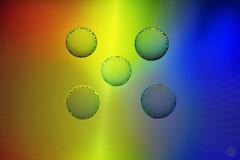 Colourful Moire (superdavebrem77) Tags: moire colour macro longexposure