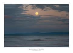 Moon Rise Ohope Beach New Zealand (Dominic Scott Photography) Tags: dominicscott newzealand bayofplenty ohope beach moon rise moonlight sony ilce7rm3 sel70200gm