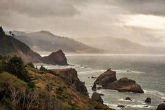 Coastal Rain (larwbuck) Tags: landscape oregon bushes clouds composite fog ocean rain rocks seascape summer textures water