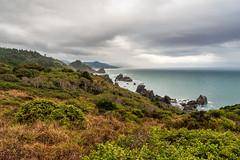 Rocky Coast (larwbuck) Tags: landscape oregon bushes clouds ocean rocks seascape summer water