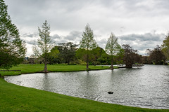 Lake in the park lined by trees in leaf on lush green grass (stewart.watsonnz) Tags: lake water grass tree nature river pond landscape park outdoors plant sky reflection lawn reservoir architecture recreation field garden house bodyofwater naturallandscape outdoor fir body pool bank boat noperson surrounded land green summer naturalenvironment large waterresources small conifer wood middle bridge castle composure cloudy building travel landlot grazing shelter