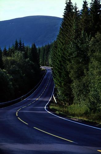 "Norwegen 1998 (391) Isterdalen • <a style=""font-size:0.8em;"" href=""http://www.flickr.com/photos/69570948@N04/49088436468/"" target=""_blank"">View on Flickr</a>"