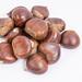 Fresh raw Chestnuts above white background