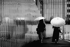 DSC04720B Urban space (soyokazeojisan) Tags: japan osaka city street people rain wall walk umbrella bw blackandwhite monochrome digital sony rx100ⅵ 2019