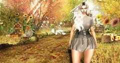 ★★ № 307 ★★ (Tit Ange) Tags: avatar secondlife sl fashion style girl fille moda mode blogger blog virtual virtuel event head catwa bento bodymesh body mesh maitreya 3d treschic senihaoriginals seniha hair doux
