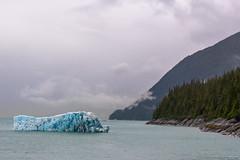 Alaska Landscape (jeff's pixels) Tags: alaska juneau landscape nature iceberg nikond850 ice car bus train plane