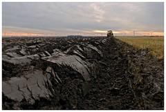Farming: Tractor plowing. (Boudewijn Olthof) Tags: farming farmer plowing tractor sunset organic agriculture agricultural fertile windmills horizon holland sealevel sea nature nikon d700 boudewijnolthof pictures