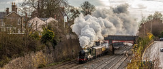 Castle in full cry (Peter Leigh50) Tags: castle class gwr 5043 earl mount edgcumbe barrow upon soar bridge house building trees train track town tree transport steam locomotive engine railway railroad road rail car