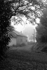 DSCF1603 (leofg37) Tags: noir et blanc black white bnw fujifilm xt3 simulation de film rennes acros street rue