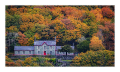 Dinorwic Quarry Hospital (Rich Walker Photography) Tags: landscape landscapes landscapephotography lakes lake tree trees autumn wales snowdonia dinorwic hospital buildings building historic canon efs1585mmisusm eos eos80d