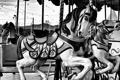 Welcome to Fabulous Las Vegas - 4 of 21 (draketoulouse) Tags: las vegas lasvegas city monochrome blackandwhite carousel horse street streetphotography wire mountains desert