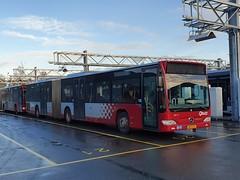 NLD Qbuzz 3517 ● Groningen Peizerweg (Roderik-D) Tags: qbuzz35003517 groningengaragepeizerweg bxgj01 3517 2009 dieselbus euro5 mercedesbenz citaro2 o530gü savas bege geledebus articulatedbus gelenkbus überlandbus streekbus 3doors 3axle ivu gorba