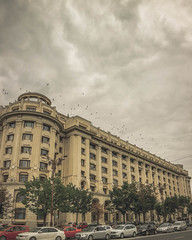 Birds in flight (Inspired Wanderess) Tags: bucharest romania grunge gloomyafternoons sepia blackandwhite streetphotography communism