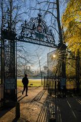 Cambridge 19 November 2019 (Sir Cam @camdiary) Tags: cambridge camdiary cambridgeuniversity trinity autumn gate trinitycollege 201911 shadows