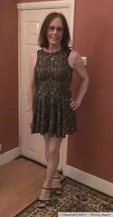 November 2019 (Girly Emily) Tags: crossdresser cd tv tvchix transvestite transsexual tgirl tgirls convincing feminine girly cute pretty sexy transgender boytogirl mtf maletofemale xdresser gurl glasses dress hull smile hosiery tights hose trans stilettos highheels lgbt lgbtq