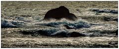 """DANCING ON THE ROCK"" #photooftheday #photography #pentaxkx #landscape #waves #sea #saffsunset #vilagarciadearousa #vga_viva #VisitaOSalnés #vilagarciaviva #vilagart #galicia #galiciapasion #galiciavisión #galiciamaxica #galeoska #queverengalicia #ponteve (saffsunset) Tags: waves pontevedra photooftheday pentaxkx galiciamaxica vgaviva saffsunset galiciavisión galeoska sea landscape photography galicia vilagarciadearousa queverengalicia vilagarciaviva visitaosalnés galiciapasion vilagart"