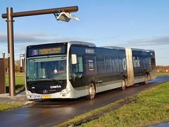 NLD Qbuzz 3458 ● Ter Sluis (Roderik-D) Tags: qbuzz34483462 2016 dieselbus euro6 mercedesbenz citaro3 o530g isri geledebus articulatedbus gelenkbus qlink ticketmachine cruisecontrol 3axle 3doors ivu gorba 3458 29bhp8 454681