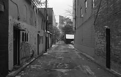 In the Alley (Alex Luyckx) Tags: harmantechnologies ilfordphoto ilford ilforddelta400 delta400 delta asa200 kodak d76 kodakd76 11 nikoncoolscanved adobephotoshopcc bw blackwhite film filmphotography believeinfilm filmisalive filmisnotdead toronto ontario canada thedonvalley riverdale metro urban city riverdalefarm oldcabbagetown ttc torontofilmshootersmeetup tfsm torontofilmshooters photowalk outing socal walk nikon nikonfe fe slr 135 35mm aisnikkor35mm128 yellow12