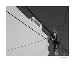 Distribution (agianelo) Tags: overhead power line pole building sky abstract monochrome bw bn blackandwhite