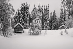 Norwegian winter landscape (steffos1986) Tags: nature landscape house winter snow ice blackandwhite blackwhite beautiful view scenery forest monochrome expression explore hike outdoor outside cold europe scandinavia countryside norway norwegen pentaxkx dslr