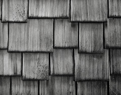 Shingles, Portland (austin granger) Tags: shingles portland wood pattern geometry texture weathered film largeformat chamonix