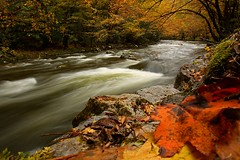 Great Smoky Mountains National Park (Steve O'Day) Tags: fall autumn timelapse canon water river nature tennessee outdoors perspective