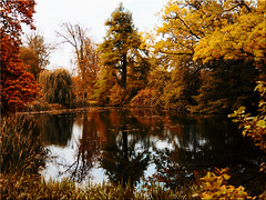Autumn mood in the castle park of Eutin (Ostseetroll) Tags: deu deutschland eutin geo:lat=5413850400 geo:lon=1061929990 geotagged schleswigholstein schosspark herbst autumn spiegelungen reflections olympus em5markii