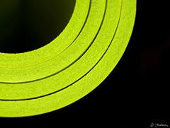 Mat... (startaleks) Tags: detail green texture background mat circle geometry