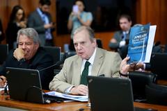 19-11-19 Comissão de assuntos econômicos - Foto Gerdan Wesley  (14)