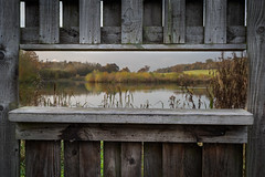 Framed (paullangton) Tags: lake view duck nature reserve hertfordshire landscape rustic autumn picture