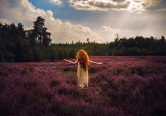 The Netherlands ({jessica drossin}) Tags: jessicadrossin portrait naturallight sky blue clouds light real flare field heather child redhair redhead trees netherlands holland wwwjessicadrossincom