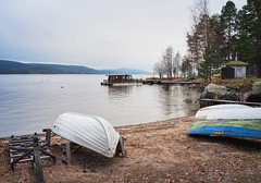 quietly waiting for winter (@Tuomo) Tags: finland november autumn beach lake jyväskylä muuratsalo päijänne landscape fuji x100f