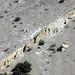 Clastic dike in the Bishop Tuff (Pleistocene, 760 ka; Sherwin Summit, Owens Valley, California, USA) 6