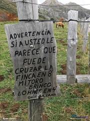 Somiedo-noviembre-2019 (ANDARA RUTAS) Tags: somiedo pola braña senderismo oso rutas guia grupo viaje puente otoño hayedo
