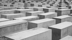Holocaust Memorial (patuffel) Tags: peter eisenman engineer buro happold holocaust memorial berlin jewish jew jews death murdered stelea slaps concrete blocks mahnmal holocaustmahnmal leica m10 50mm summicron