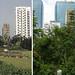 Kowloon Park 1980+2017