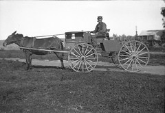 Travel photo, circa 1902. (SDNHM-Library) Tags: wagons negatives photoalbums california sdnhm